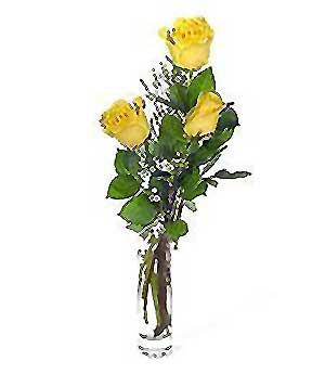 Eskişehir çiçek servisi , çiçekçi adresleri  3 adet kalite cam yada mika vazo gül