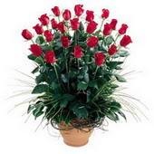 Eskişehir online çiçekçi , çiçek siparişi  10 adet kirmizi gül cam yada mika vazo