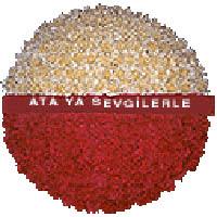 arma anitkabire - mozele için  Eskişehir internetten çiçek satışı
