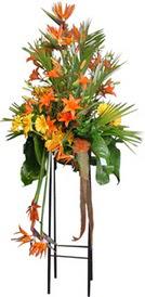 Eskişehir anneler günü çiçek yolla  perförje tanzimi dügün nikah ve açilislara