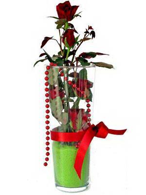 Eskişehir kaliteli taze ve ucuz çiçekler  Cam yada mika içerisinde 9 adet kirmizi gül - sevdiklerinize özel
