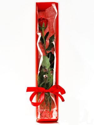 Eskişehir ucuz çiçek gönder  1 adet kutuda gül