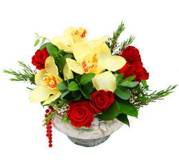 Eskişehir internetten çiçek siparişi  1 kandil kazablanka ve 5 adet kirmizi gül