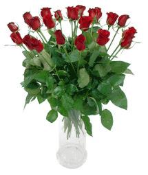 Eskişehir çiçek siparişi vermek  11 adet kimizi gülün ihtisami cam yada mika vazo modeli