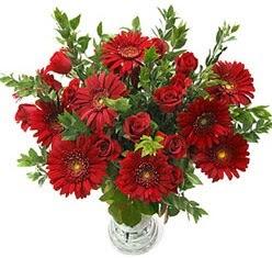 5 adet kirmizi gül 5 adet gerbera aranjmani  Eskişehir uluslararası çiçek gönderme