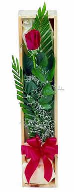 Sade ve gösterisli kutu içerisinde tek gül  Eskişehir 14 şubat sevgililer günü çiçek