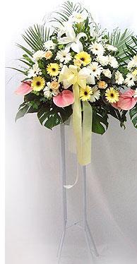 Eskişehir kaliteli taze ve ucuz çiçekler   perförje çiçegi dügün çiçekleri