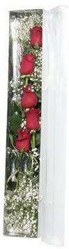 Eskişehir anneler günü çiçek yolla   5 adet gülden kutu güller