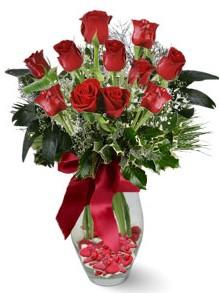9 adet gül  Eskişehir hediye sevgilime hediye çiçek  kirmizi gül