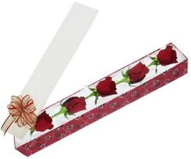 Eskişehir hediye sevgilime hediye çiçek  kutu içerisinde 5 adet kirmizi gül
