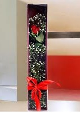 kutu içinde tek kirmizi gül  Eskişehir çiçek yolla