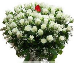 Eskişehir hediye sevgilime hediye çiçek  100 adet beyaz 1 adet kirmizi gül buketi