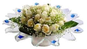 Eskişehir çiçek yolla  11 adet Beyaz güller özel cam tanzim