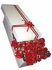 Eskişehir çiçek siparişi vermek  11 adet 1.kalite magnum güller