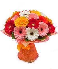 Renkli gerbera buketi  Eskişehir İnternetten çiçek siparişi