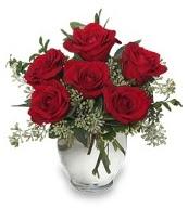 Vazo içerisinde 5 adet kırmızı gül  Eskişehir 14 şubat sevgililer günü çiçek