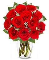 12 adet vazoda kıpkırmızı gül  Eskişehir güvenli kaliteli hızlı çiçek
