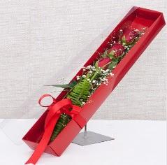 Kutu içerisinde 3 adet kırmızı gül  Eskişehir kaliteli taze ve ucuz çiçekler