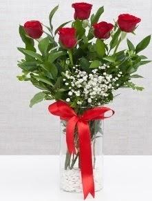 cam vazo içerisinde 5 adet kırmızı gül  Eskişehir yurtiçi ve yurtdışı çiçek siparişi