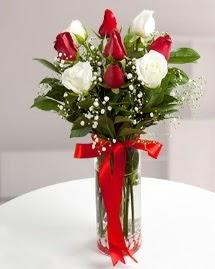 5 kırmızı 4 beyaz gül vazoda  Eskişehir yurtiçi ve yurtdışı çiçek siparişi