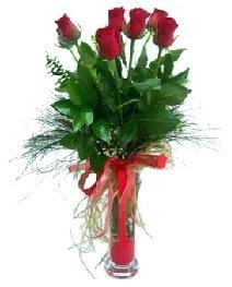 vazo içerisinde 5 kırmızı gül  Eskişehir çiçek , çiçekçi , çiçekçilik