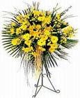 Eskişehir ucuz çiçek gönder  Sari kazablanka Ferforje