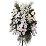 Eskişehir güvenli kaliteli hızlı çiçek  Ferforje beyaz renkli kazablanka