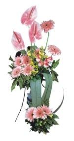Eskişehir çiçek , çiçekçi , çiçekçilik  Pembe Antoryum Harikalar Rüyasi