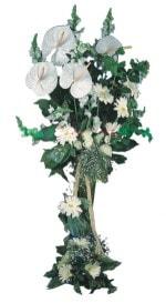 Eskişehir çiçekçi telefonları  antoryumlarin büyüsü özel