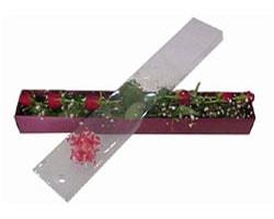 Eskişehir İnternetten çiçek siparişi   6 adet kirmizi gül kutu içinde