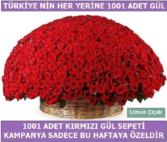 1001 Adet kırmızı gül Bu haftaya özel  Eskişehir çiçek siparişi sitesi