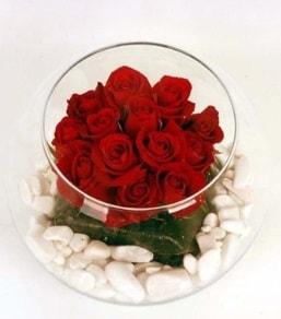 Cam fanusta 11 adet kırmızı gül  Eskişehir internetten çiçek siparişi