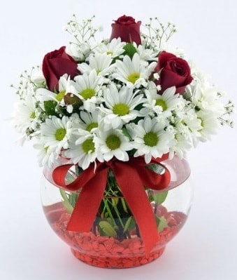 Fanusta 3 Gül ve Papatya  Eskişehir hediye sevgilime hediye çiçek