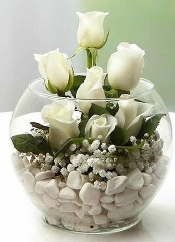 Beyaz Mutluluk 9 beyaz gül fanusta  Eskişehir anneler günü çiçek yolla