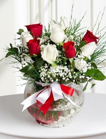 Aşk Küresi  5 beyaz 5 kırmızı gül fanusta  Eskişehir hediye sevgilime hediye çiçek