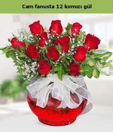 Cam içerisinde 12 adet kırmızı gül  Eskişehir hediye sevgilime hediye çiçek