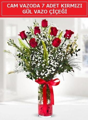 Cam vazoda 7 adet kırmızı gül çiçeği  Eskişehir internetten çiçek satışı