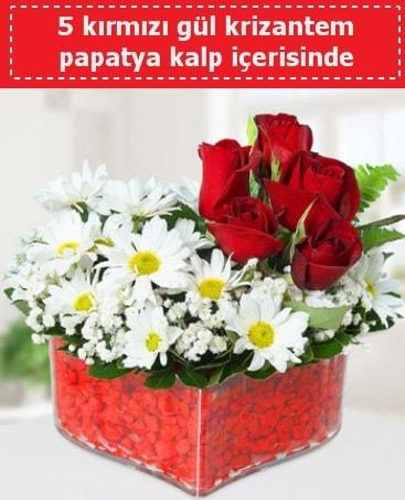 mika kalp içerisinde 5 kırmızı gül papatya  Eskişehir internetten çiçek siparişi