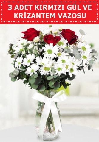 3 kırmızı gül ve camda krizantem çiçekleri  Eskişehir internetten çiçek siparişi