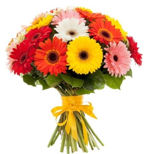 Gerbera demeti buketi  Eskişehir online çiçek gönderme sipariş
